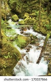Ladder Creek behind Gorge Power House in North Cascades National Park, Washington State, USA