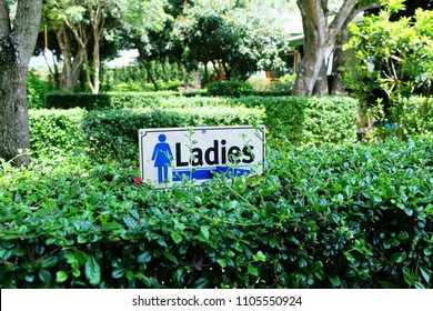 Ladies toilet sign with green nature