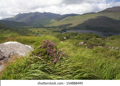 Ladies View Killarney, Ireland