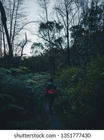 Lady in colourful jacket walking through the bush of the Grampians.