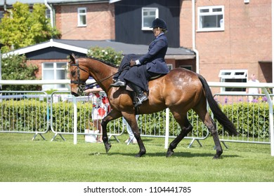 Lady dressed in Riding Habit riding side saddle on former racehorse during equestrian demonstration at Market Rasen Races : Market Rasen Racecourse, Lincolnshire, UK : 20 May 2018 : Pic Mick Atkins