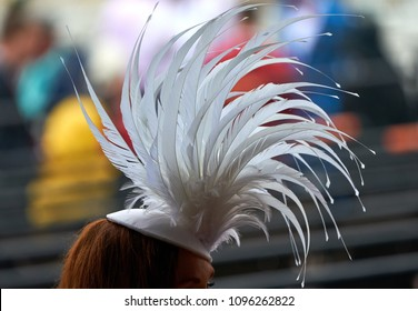 A lady in a hat at a horse race.
