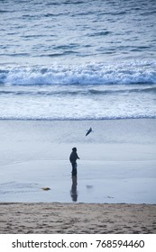Lady in Hijab on the beach with seagull flying around
