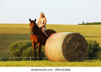 Lady with horse near hayroll on meadow in summer day