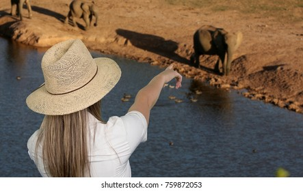 lady tourist pointing to elephants while on Safari on South Africa