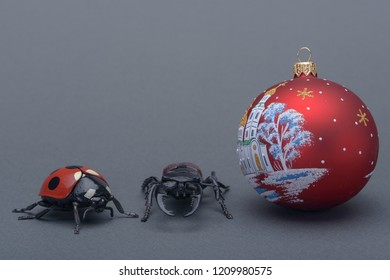a ladybird and stag beetle and new year's eve ball