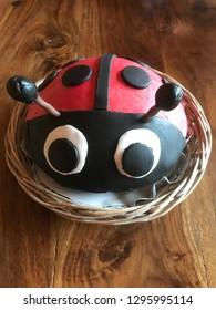 Ladybug cake in the basket