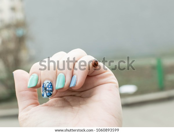 ladybug on a woman's hand