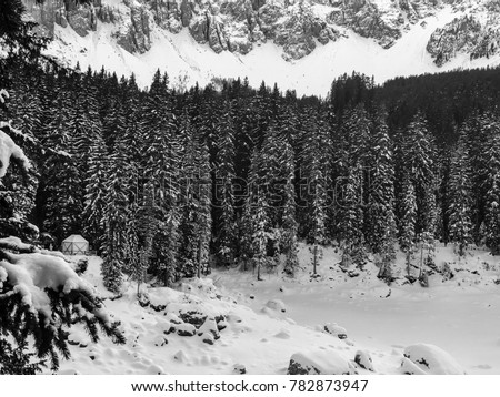 Lago Di Carezza Bianco E Nero Stock Photo Edit Now 782873947