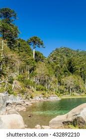 Lago Verde lake in National Park Huerquehue, Chile