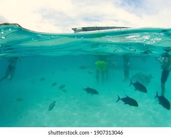 lagoon and beach of moorea, sister island of tahiti - french polynesia