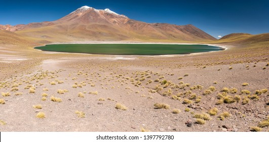 Miñique Lagoon in Desierto de Atacama (Atacama Desert), Chilean altiplano inside Andes. With Miscanti Lagoon are the famous Lagunas Altiplanicas. Awe travel destination. Available at higher resolution