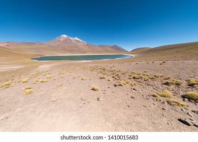Miñique Lagoon in Desierto de Atacama (Atacama Desert), Chilean altiplano inside Andes. With Miscanti Lagoon are the famous Lagunas Altiplanicas. Awe travel destination. Awe scenery on a remote place