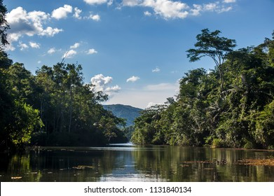 Lagoon Landscape photographed in the city of Cariacica, Espirito Santo, Southeast of Brazil. Atlantic Forest Biome. Picture made in 2012.