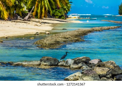 lagoon of more island