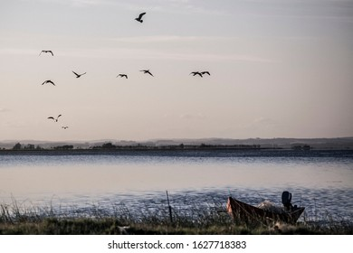 Lagoon at Sunset with birds uruguay