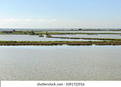lagoon view with green soil dams among briny water, shot in bright spring sun light at Comacchio, Ferrara,  Italy