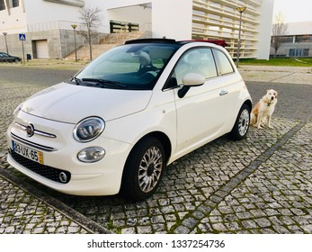 LAGOS, PORTUGAL - MARCH 11: Dog sitting at Fiat 500 on March 11, 2019.