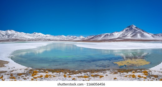 Laguna Blanca, Sud Lipez province, Potosi, Bolivia