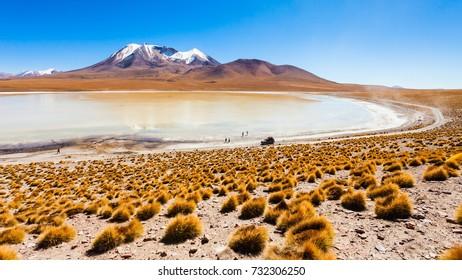 Laguna Canapa is a salt lake in the altiplano of Bolivia