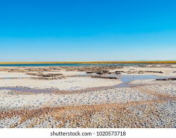 Laguna Cejar, Salar de Atacama, Atacama Desert, Antofagasta Region, Chile