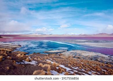 Laguna Colorada, Bolivia. The Red Lagoon, Sunny Day. Bolivia.
