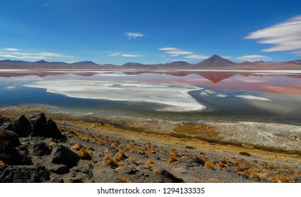 Laguna Colorada, Coloured Lagoon, takes it's colour from algae and it's populated by thousands of flamingos. Andean altiplano of Bolivia, South America
