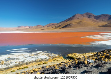 Laguna Colorada. Mountains of Bolivia, altiplano. South America.