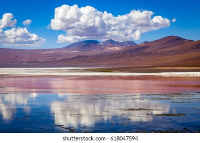 Laguna Colorada (Red Lagoon) is a shallow salt lake in Bolivia