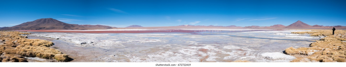 Laguna Colorada (Red Lagoon) is a shallow salt lake in the southwest of the Altiplano of Bolivia, South America