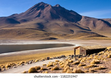 Laguna Miscanti high in the Andes Mountains in the Atacama Desert, northern Chile, South America.