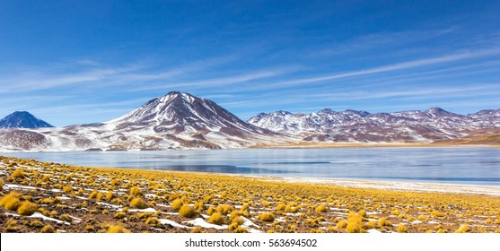 Laguna Miscanti in Toconao, San Pedro de Atacama, Chile.