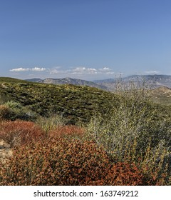 Laguna Mountain Recreation Area, Cleveland National Forest, San Diego County, California, USA.