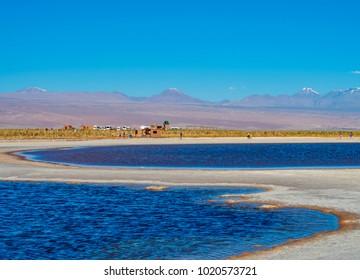 Laguna Piedra, Salar de Atacama, Antofagasta Region, Chile
