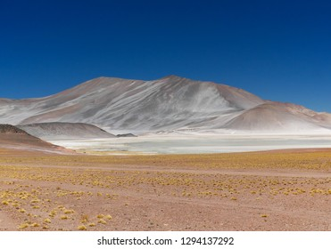 Laguna Piedras Rojas in the Chilean Andes. The desert of Atacama in the north of Chile is the driest region on earth.