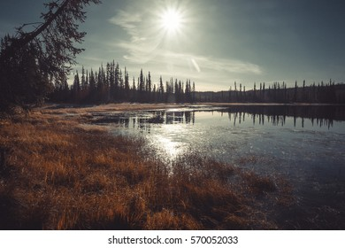 Lake in Alaska with boreal drunken trees falling in to the calm water during freezing autumn morning coloured to vaintage with sun flares and sun and nice clouds
