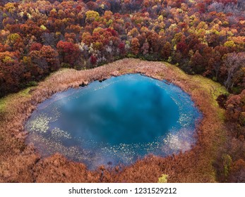 A lake around colourfull trees areal view