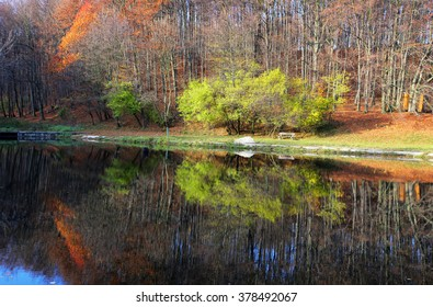 Lake with  autumn forest reflectio, Zochova chata - Shutterstock ID 378492067