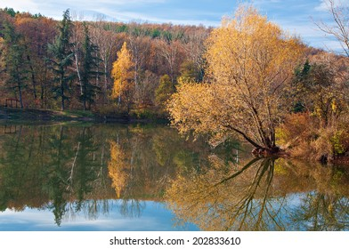 Lake with autumn trees reflections