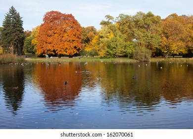 Lake and autumn trees with reflections on water in the Ujazdowski Park, city center of Warsaw, Poland.