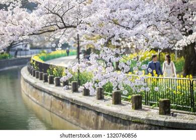 Lake Biwa Canal in spring, Kyoto, Japan