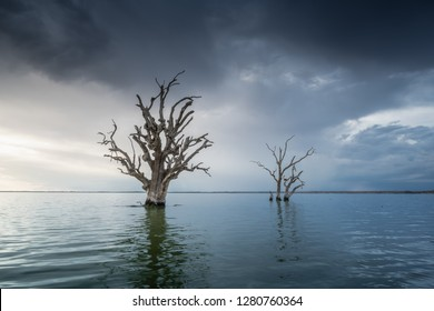 Lake Bonney in Barmera, South Australia