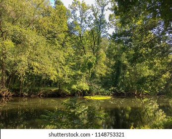Lake Carnegie, Reservoir in New Jersey. formed from a dam on the Millstone River, in the far northeastern corner of Princeton, Mercer County. Beautiful green trees reflected in the water.