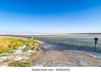 Lake Cejar San Pedro de Atacama