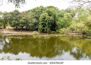Lake of Choeung Ek killing fields near Phnom Penh on Cambodia