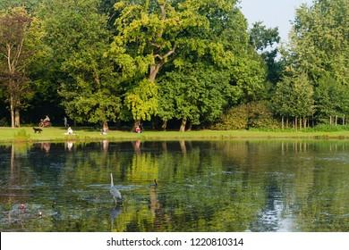 Lake in city park Vondelpark in Amsterdam, Netherlands
