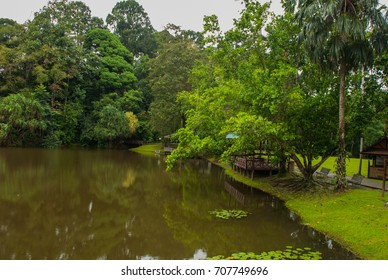 Lake in cloudy weather, the trees reflected in the water in the summer Borneo, Sabah, Malaysia