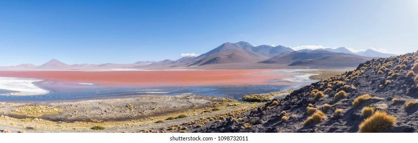 Lake Colorada in the Uyuni desert. Perfect pink lake.