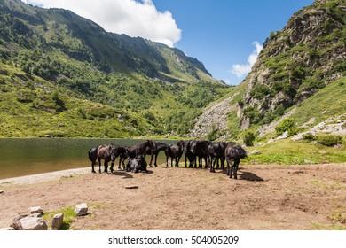 Lake of Comte, Merens-les-Vals, Ariege, France