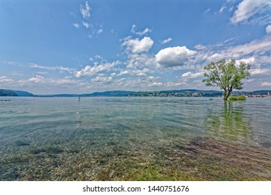 Lake Constance in summer with high water